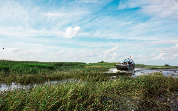 Coopertown Airboat Rides