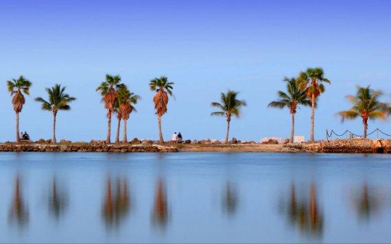 环礁Matheson Hammock Park