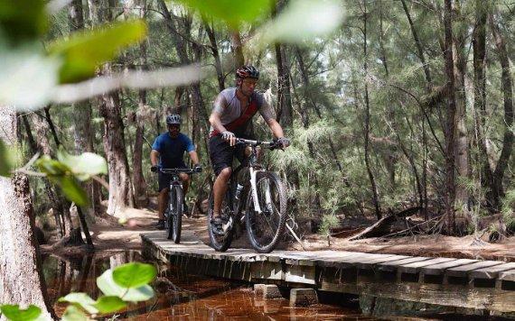 骑山地自行车Oleta River State Park